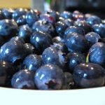 Blueberries and More Blueberries