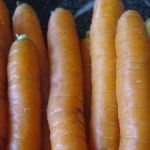 "In The Box — CSA Week 12 {Carrot ""Fettuccine""}"