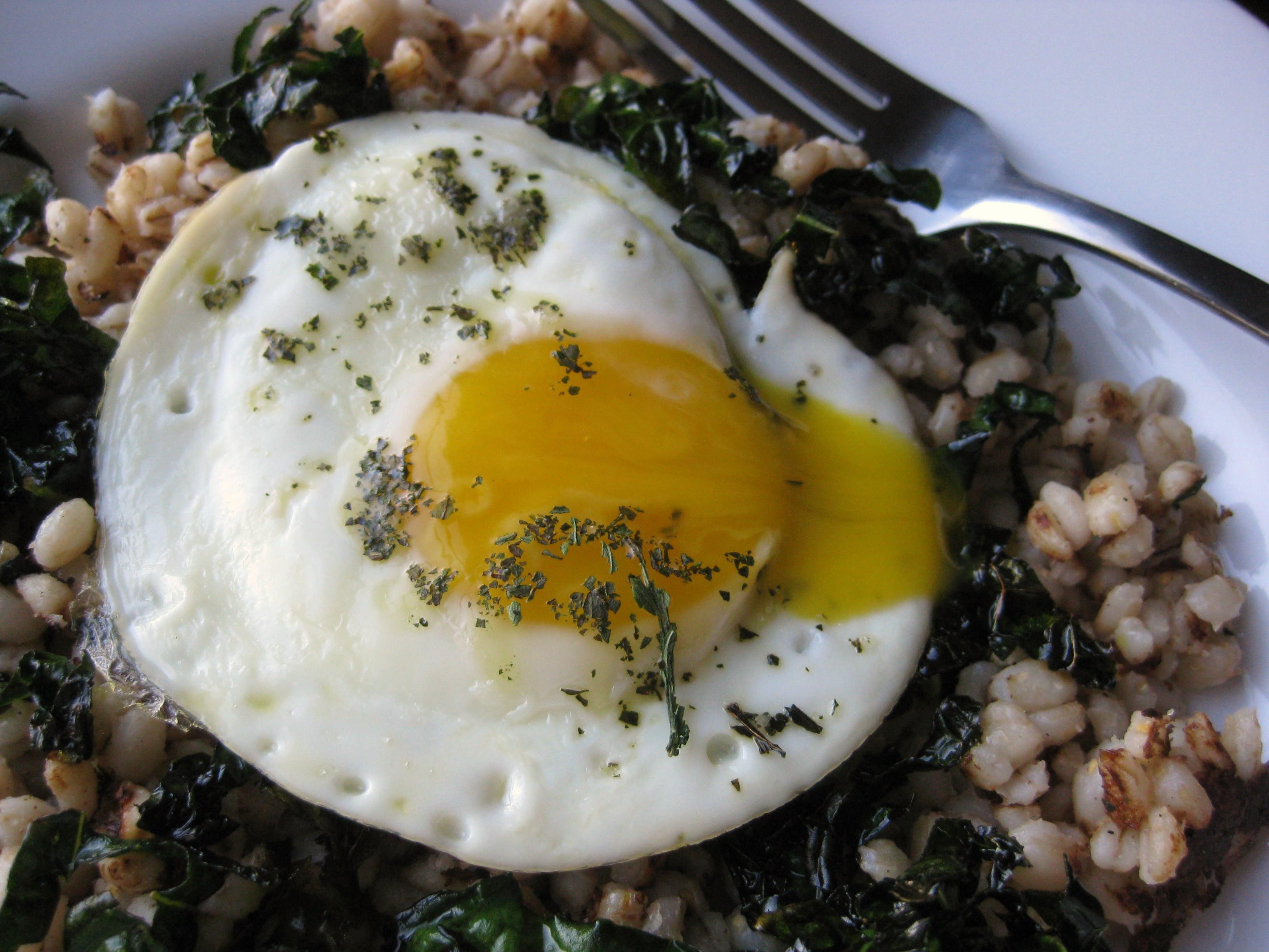Egg on Kale and Barley