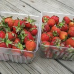 In The Box – CSA Week 9 {Strawberry Cheesecake in a Jar}